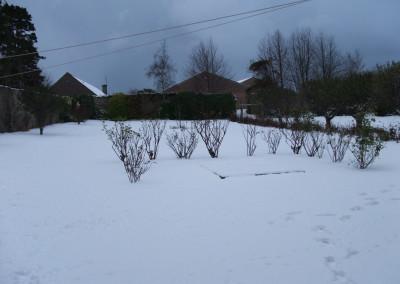 more snow 004