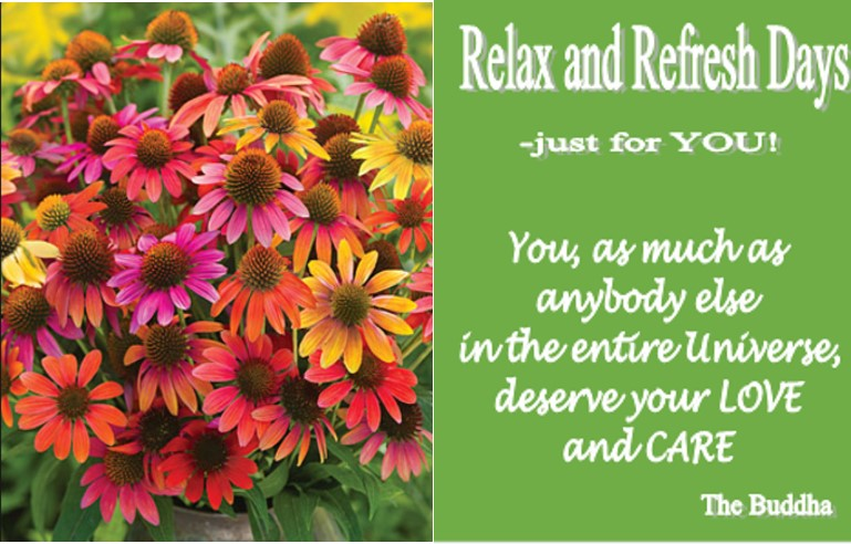 Relax and refresh Jan
